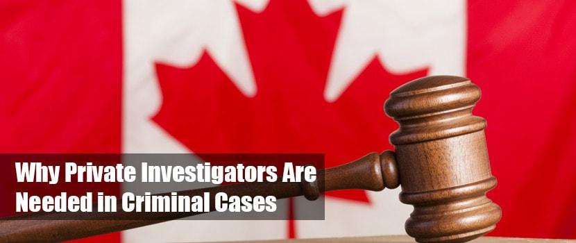 private investigators criminal cases